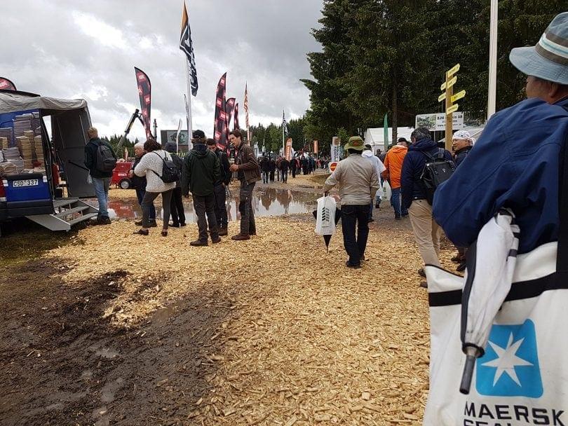Elmia Wood 2017 - Crowd 1