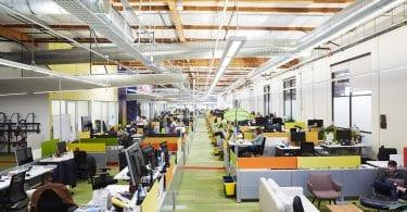 Google office landscape